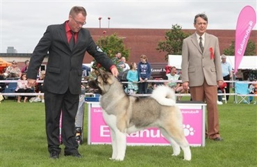 Eukanuba World Challenge 2011